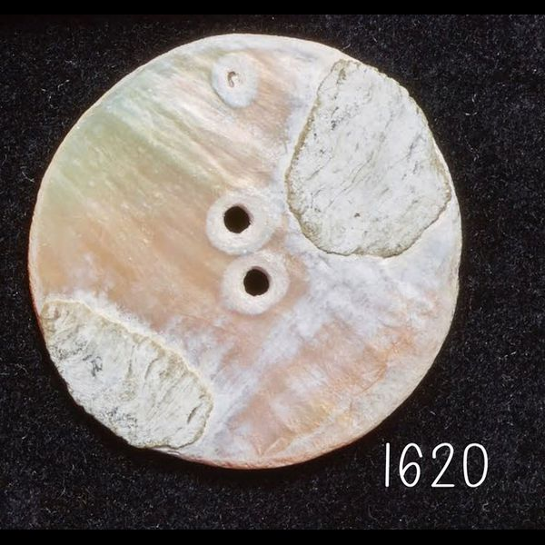item with id: 1620